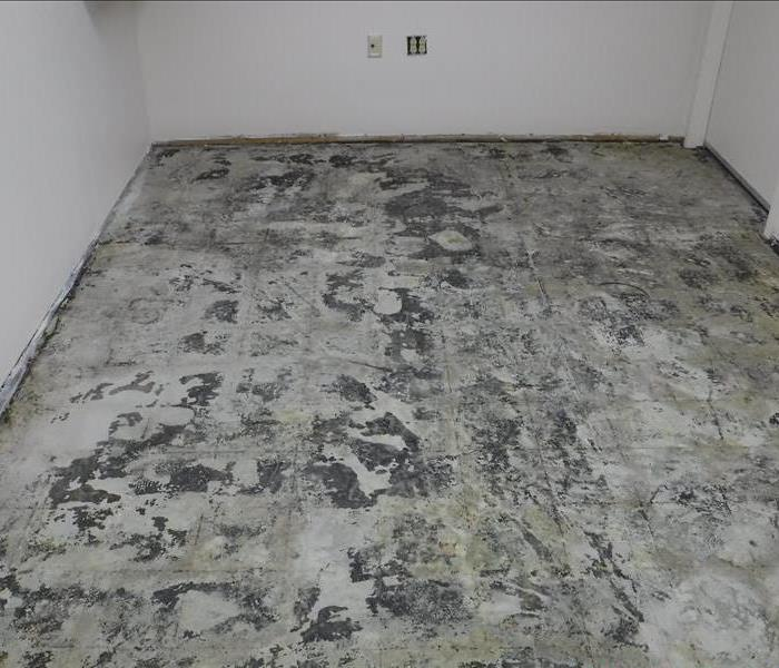 Damaged Flooring in Commercial Room - Voorhees, NJ After