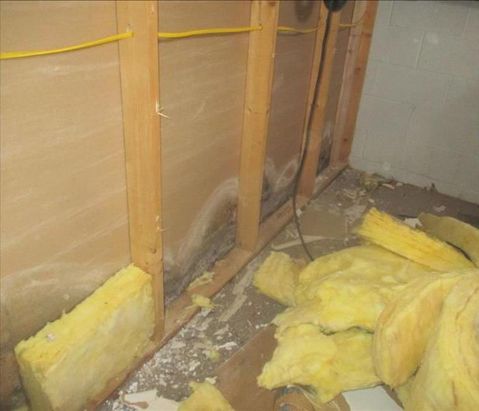 Moldy Structure - Blackwood, NJ Before