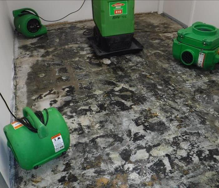 Damaged Flooring in Commercial Room - Voorhees, NJ Before