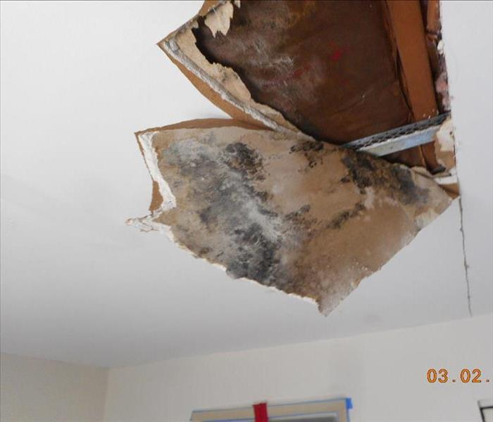 Mold Damage to Ceiling in Audubon, NJ Before