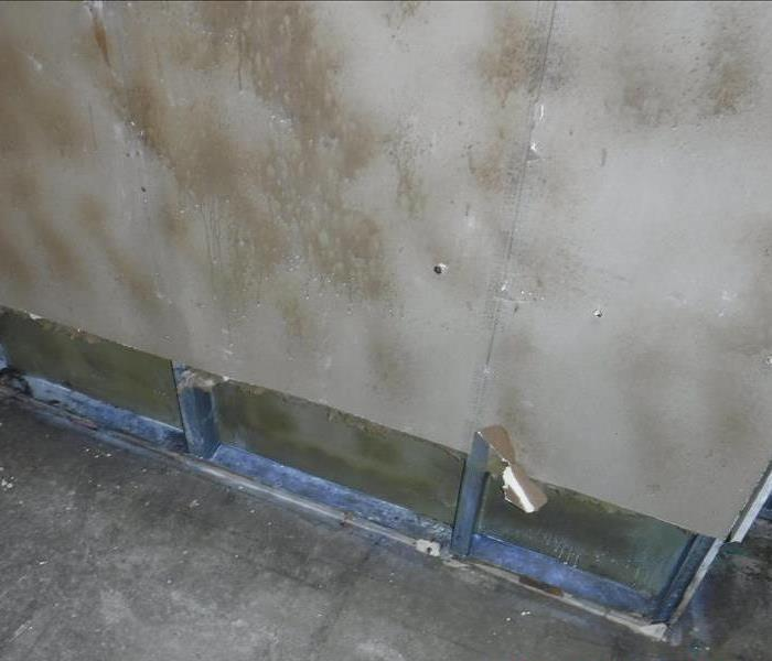 Mold remediation in Office in Voorhees, NJ After