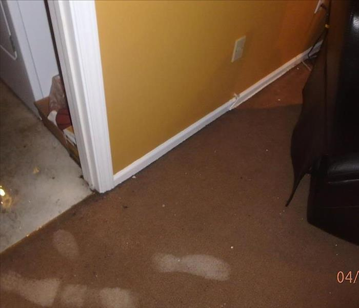 Water Damage Water and Mold Issues in Your Basement