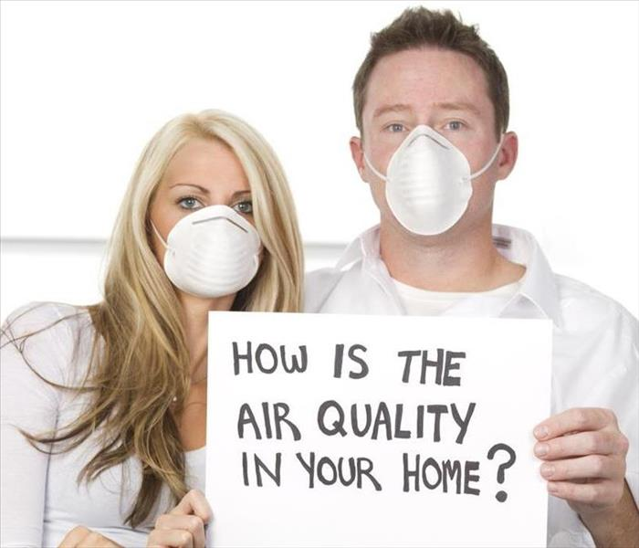 Mold Remediation Is Mold Making You Sick?