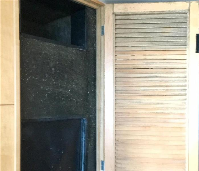 Commercial Mold Clean-up in Voorhees, NJ