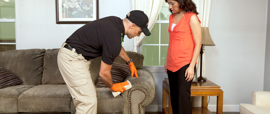Voorhees, NJ carpet upholstery cleaning